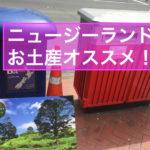 ニュージーランドの一番喜ばれるお土産って?「ポストカード」を出そう!