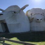 ニュージーランド(Tirau)にある巨大な羊アートが面白スギ!